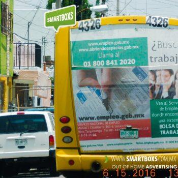 SERVICIO ESTATAL DE EMPLEO SLP BOLSA DE TRABAJO